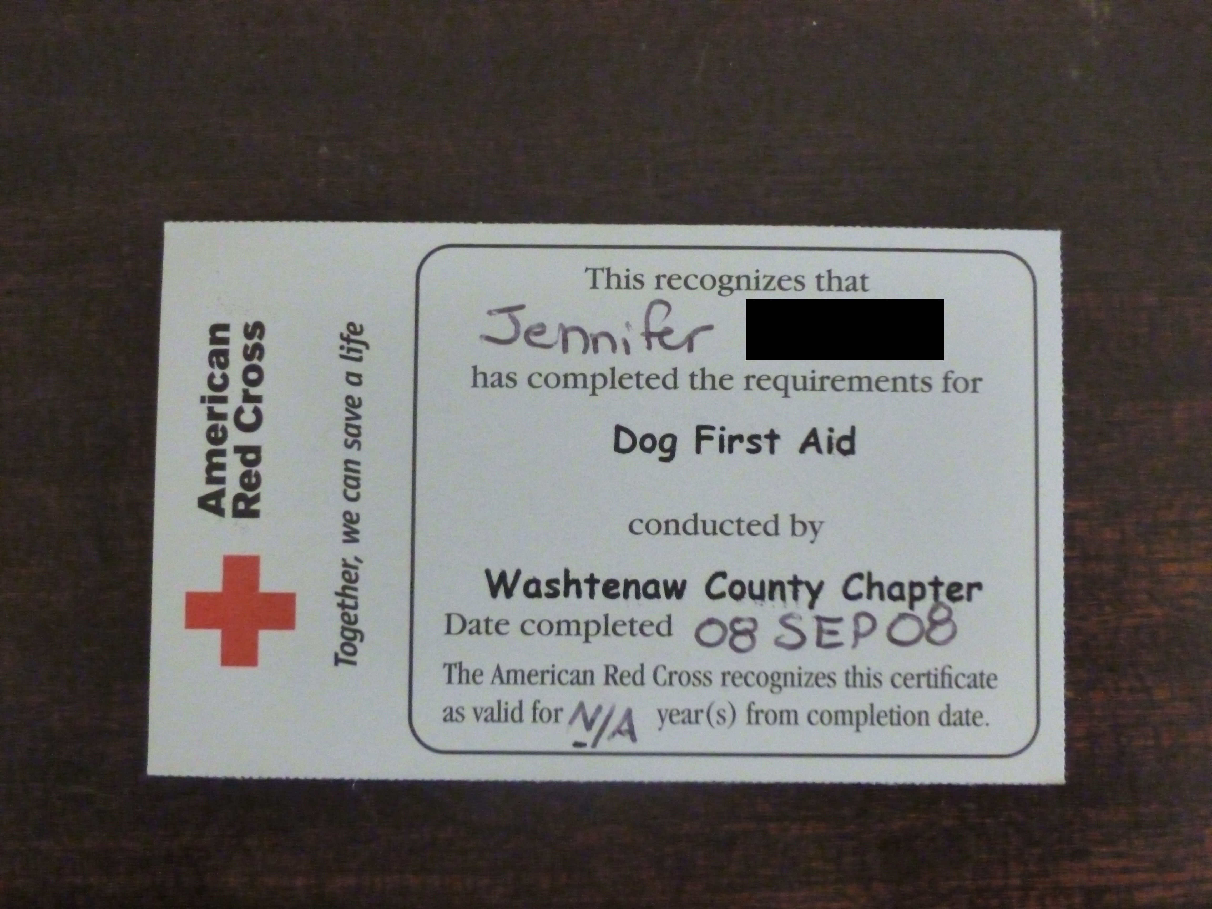 Business im not stalking you my american red cross dog first aid card 1betcityfo Images