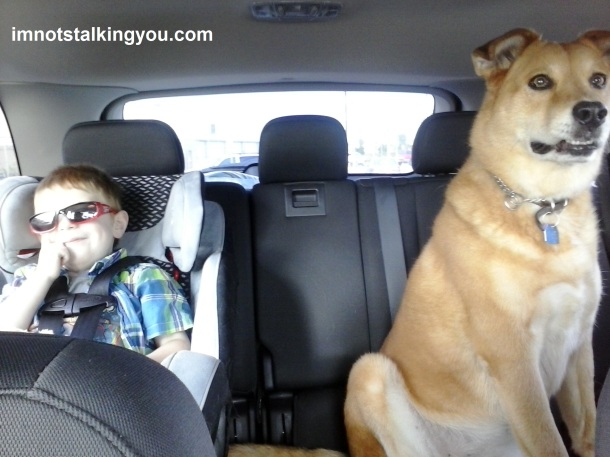 "The ""kids"" in the backseat"