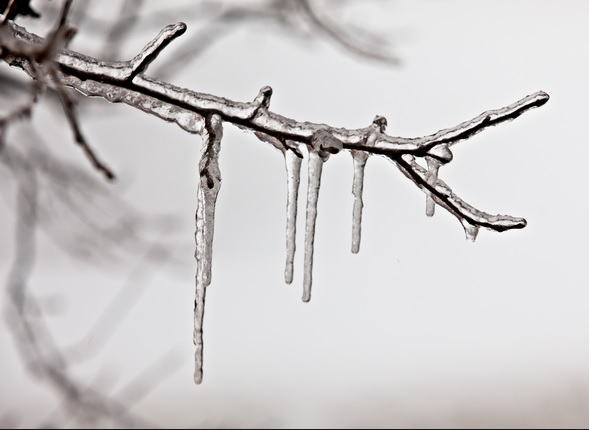 Freezing rain, in case you live somewhere without it.
