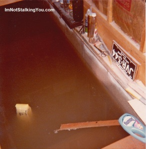 Our flooded basement, Riga, MI, 1981