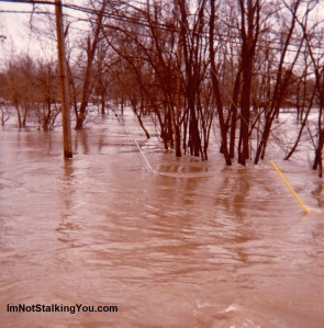 Flooded Park in Blissfield, MI, 1981