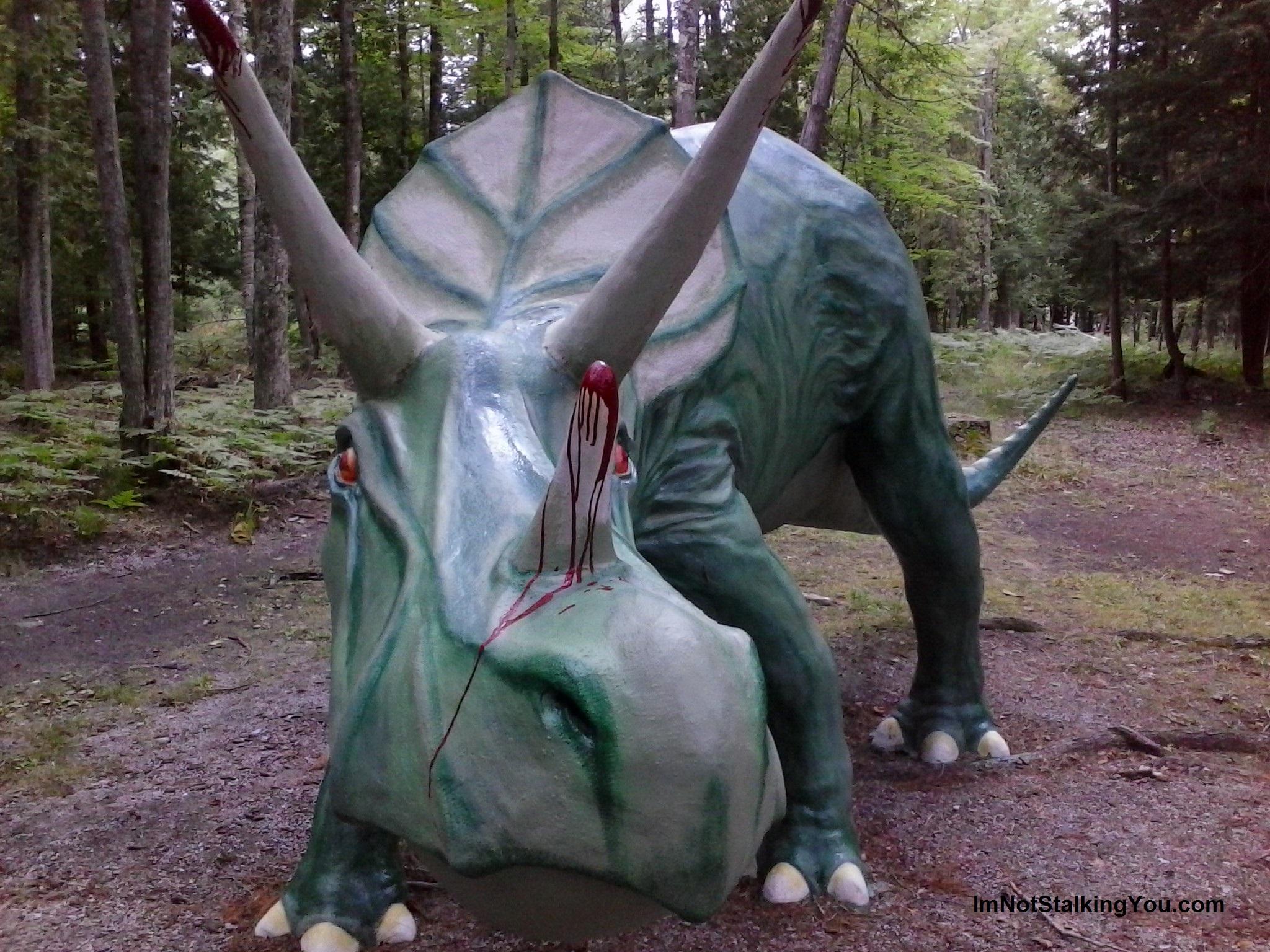 Dinosaur Gardens Im not stalking you