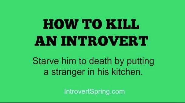 EXTROVERT-Introvert joke