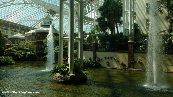 The gorgeous Opryland Hotel. It was unbelievable.
